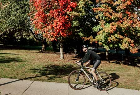 landyachtz-bikes-ride-fora-the-forest-2020-best-fall-colours